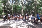 Ponykamp II