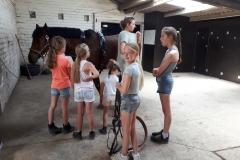 Ponykamp Heihof